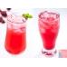 台東洛神花原汁(1瓶入)/酸甜好滋味/絕無防腐劑/SGS合格檢驗報告